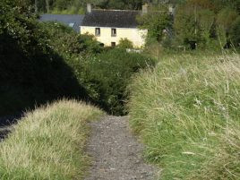 Track leading to Delvid Stables holiday cottage,Llangennith, Gower`