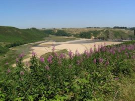 Explore Pennard Burrows - just one of many great things to do in Gower