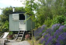 Glamping in the Gower Peninsula, Swansea